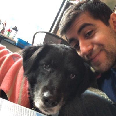 Kamal's dog day care