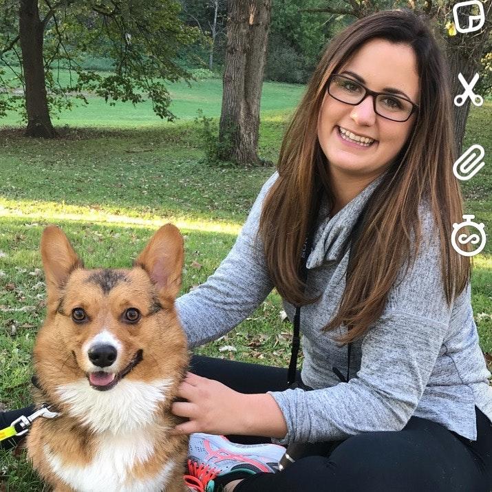 Samy's dog day care