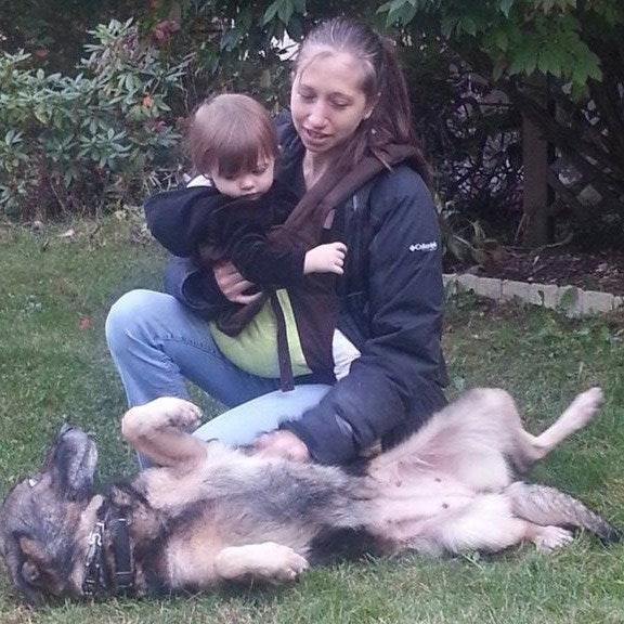 Julie's dog day care