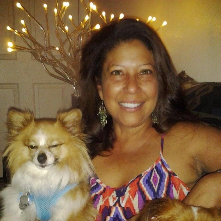 Clara's dog day care