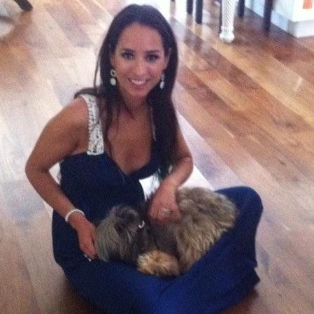 Francis's dog boarding