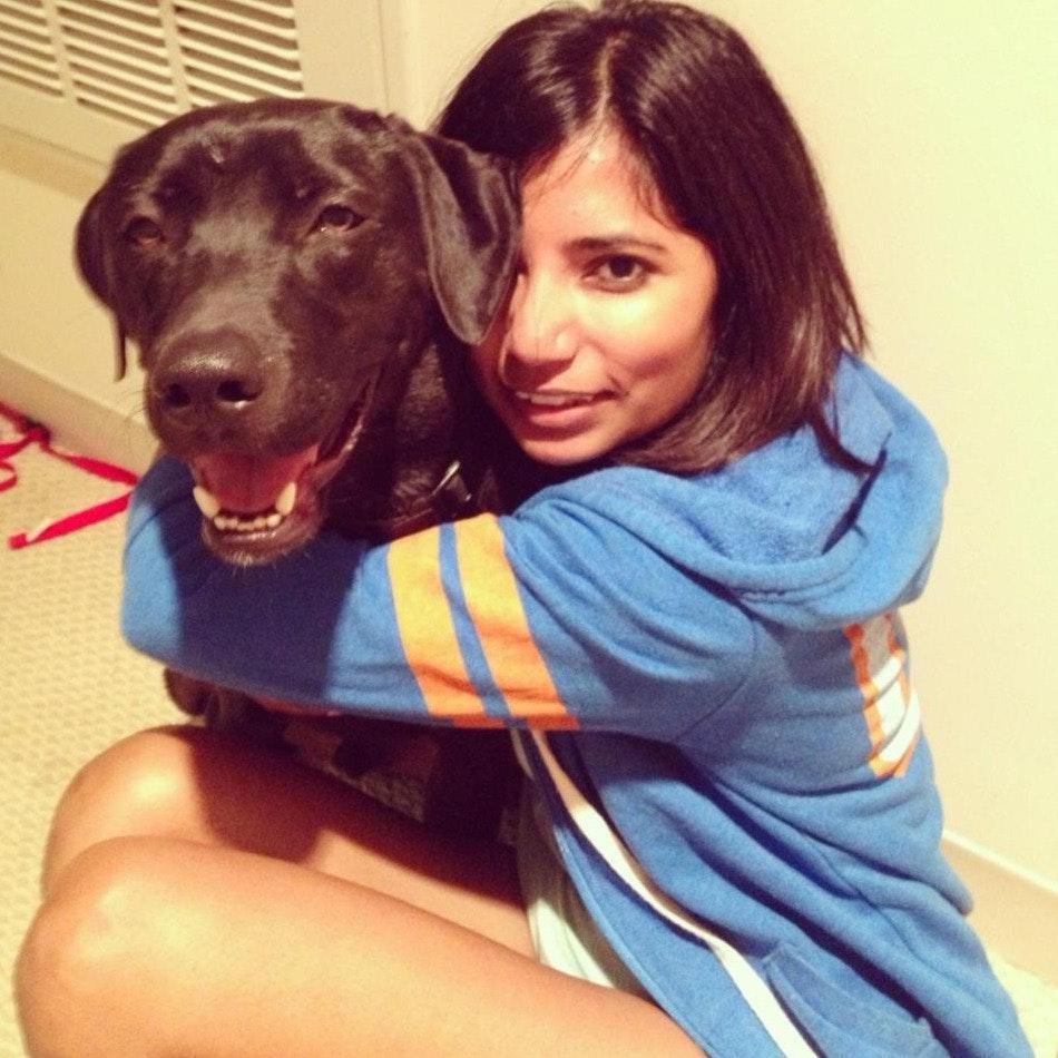 Bhavi's dog day care