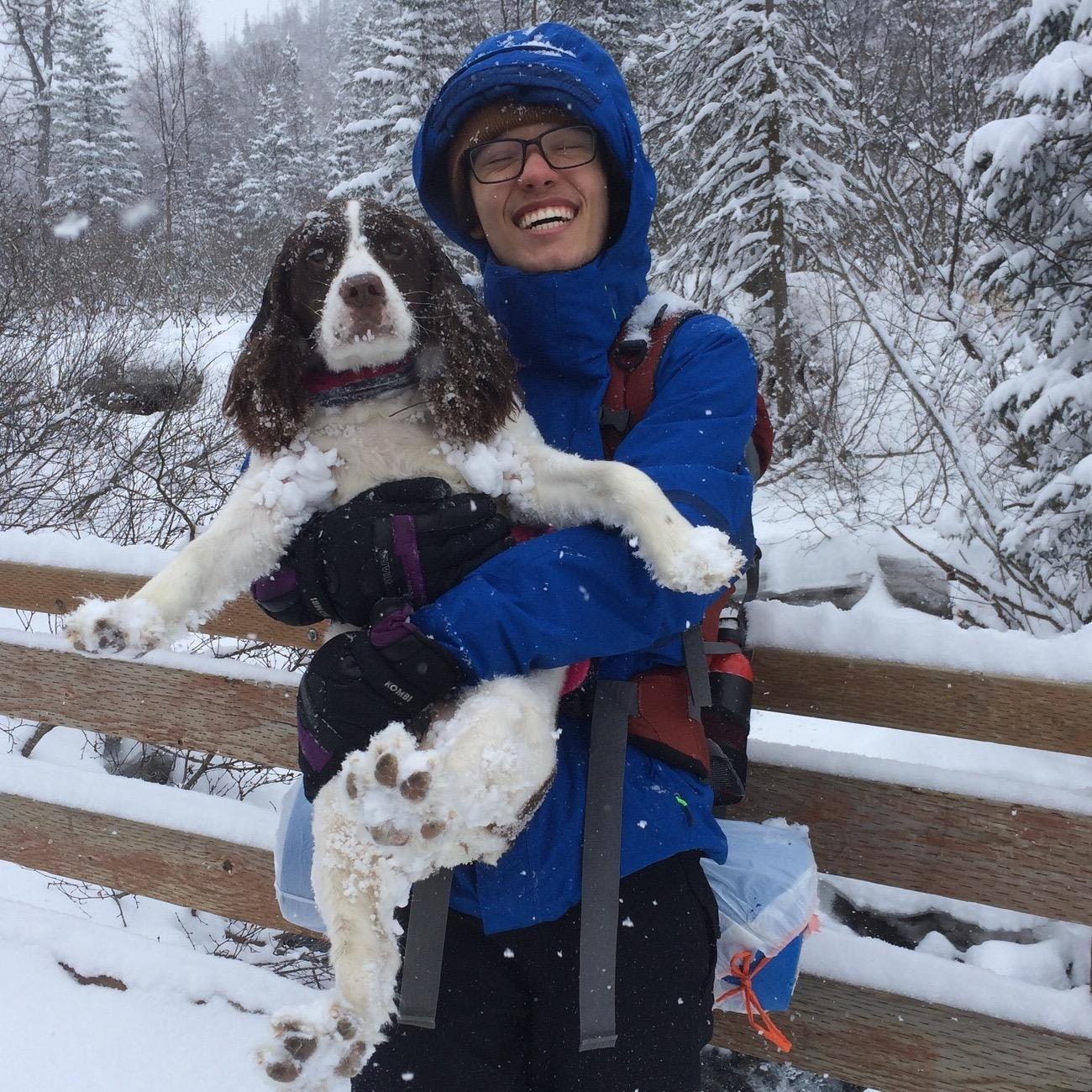 Daniel's dog day care