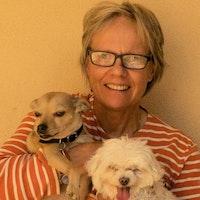 Christel's dog day care