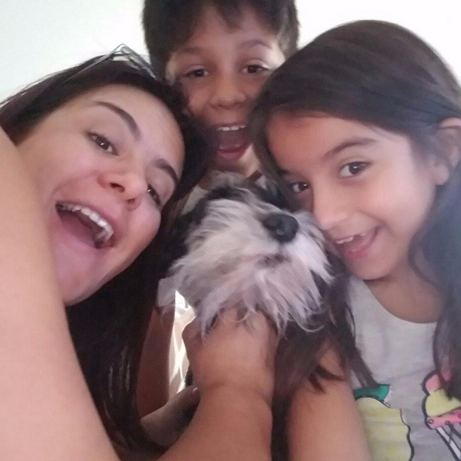 Fabio's dog day care