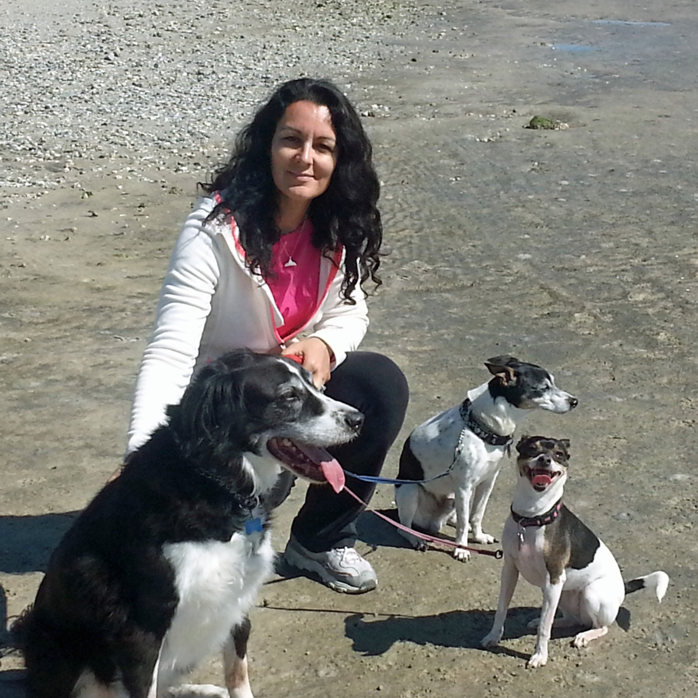 pet sitter Marketa