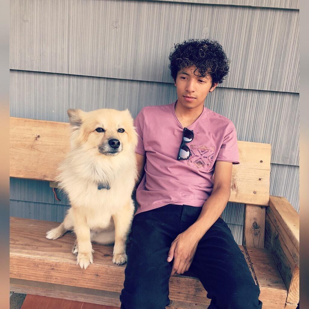dog walker Luis