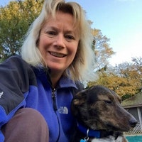 Sue & John's dog boarding