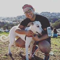 Jamal's dog boarding