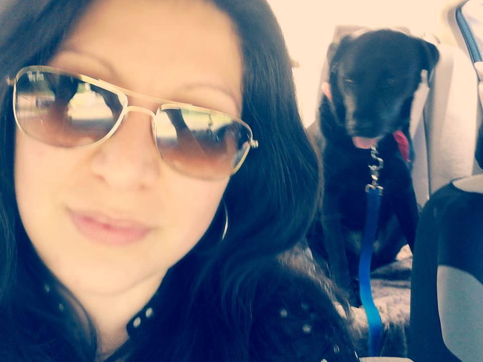 Ayalen's dog day care
