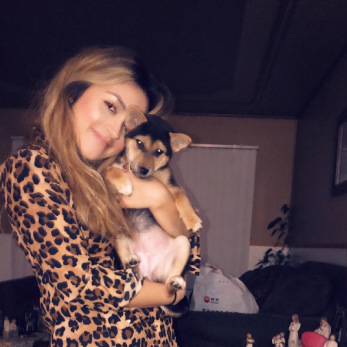 Reina's dog day care