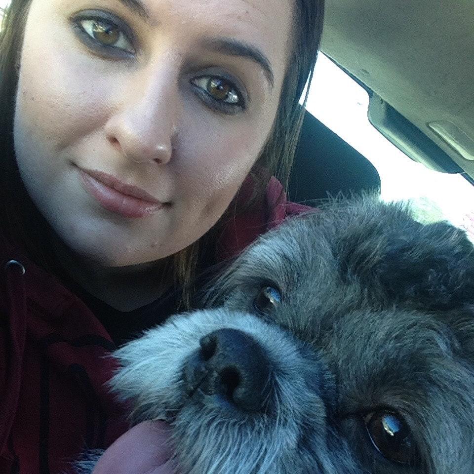 Kayleigh's dog day care