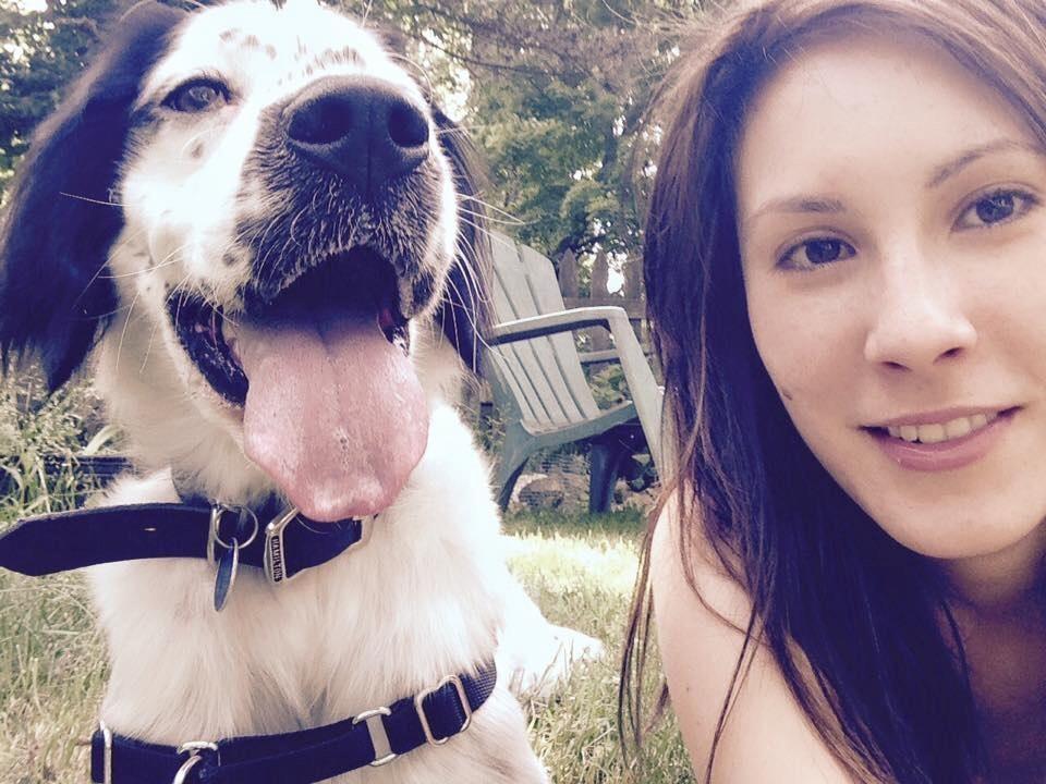 Ali's dog day care