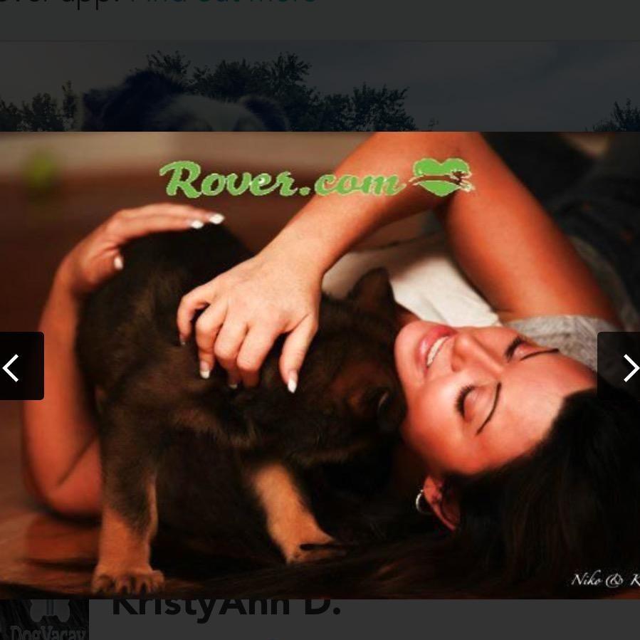 KristyAnn's dog day care