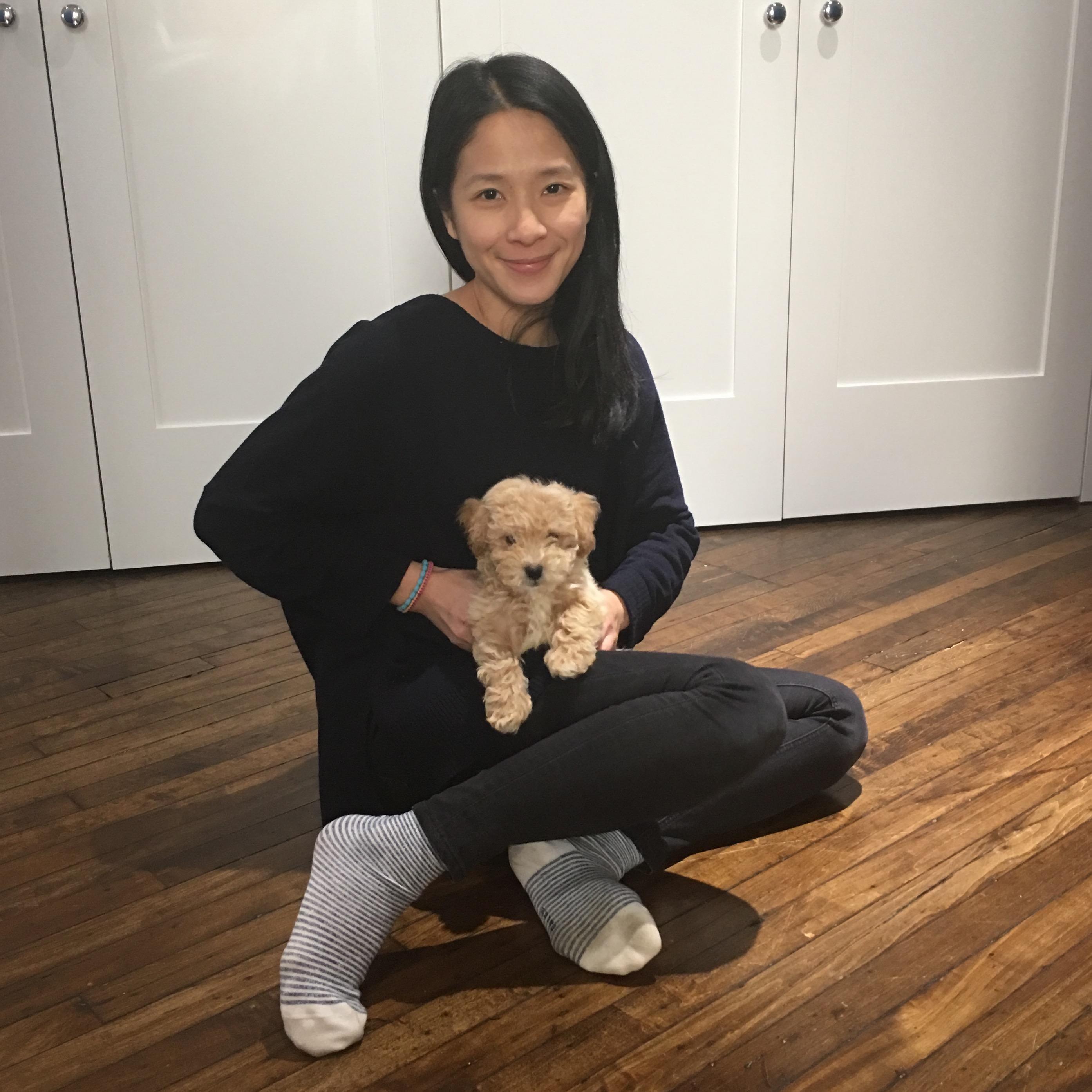 Shih-Fen's dog boarding