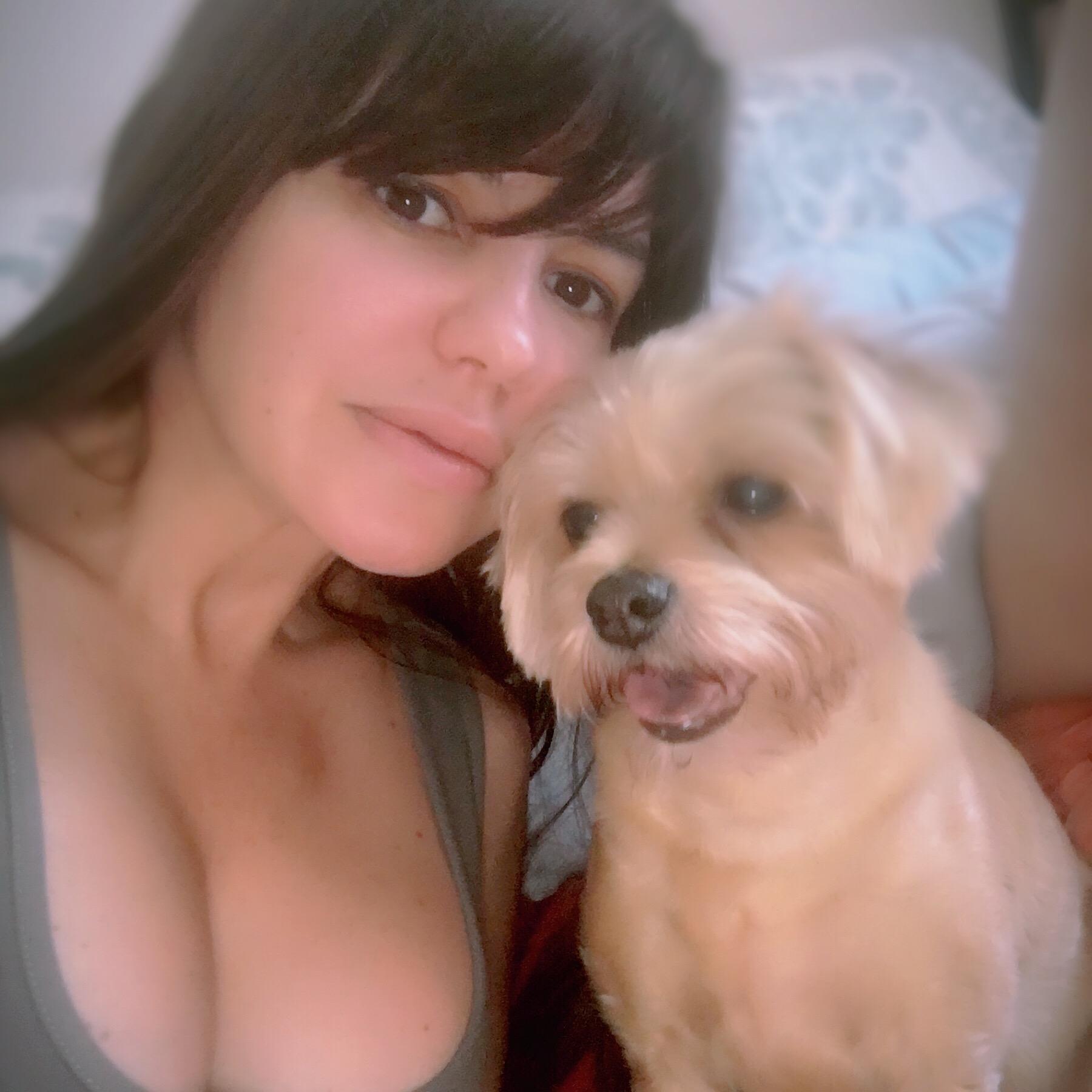 Albaida's dog day care
