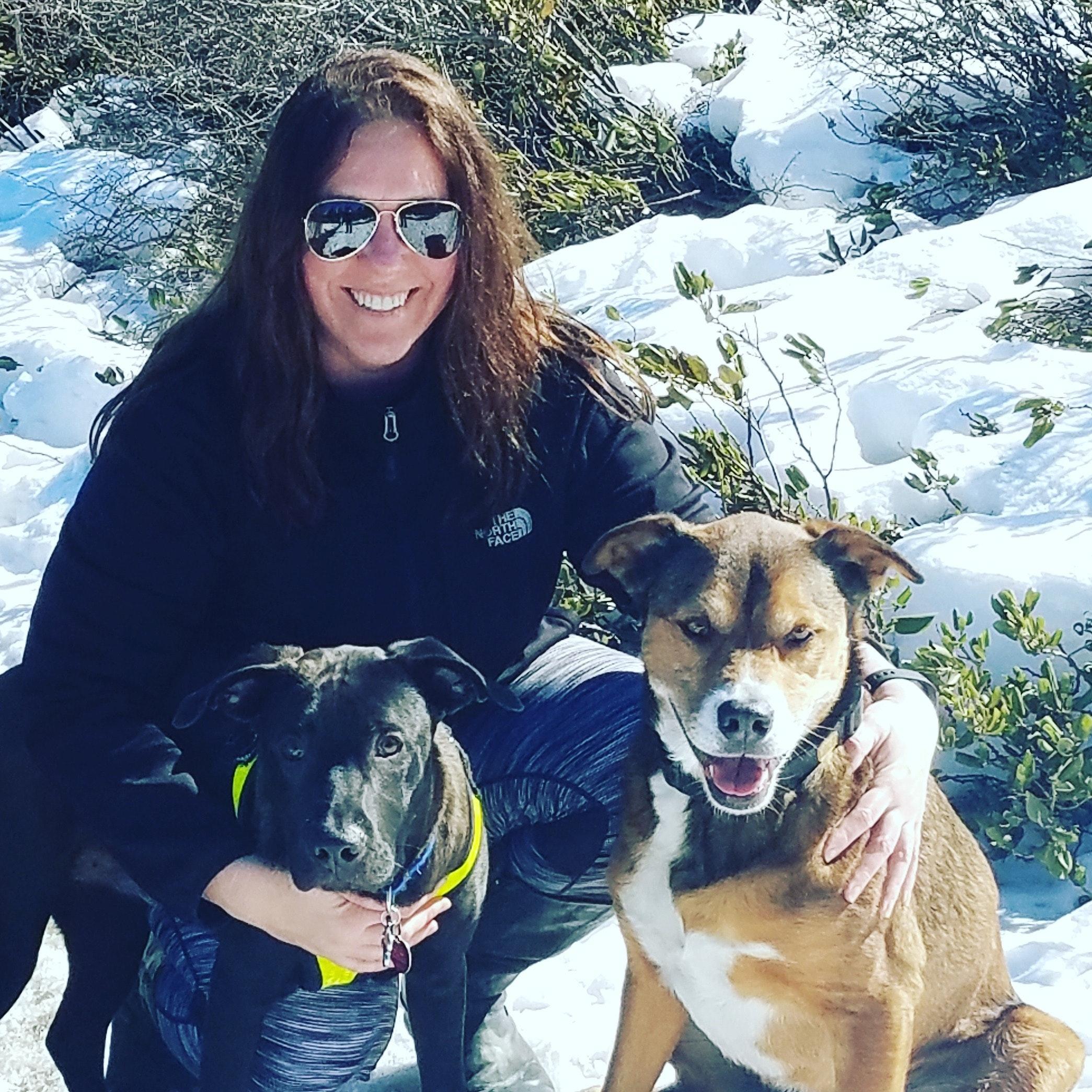 Miranda & Sean's dog day care