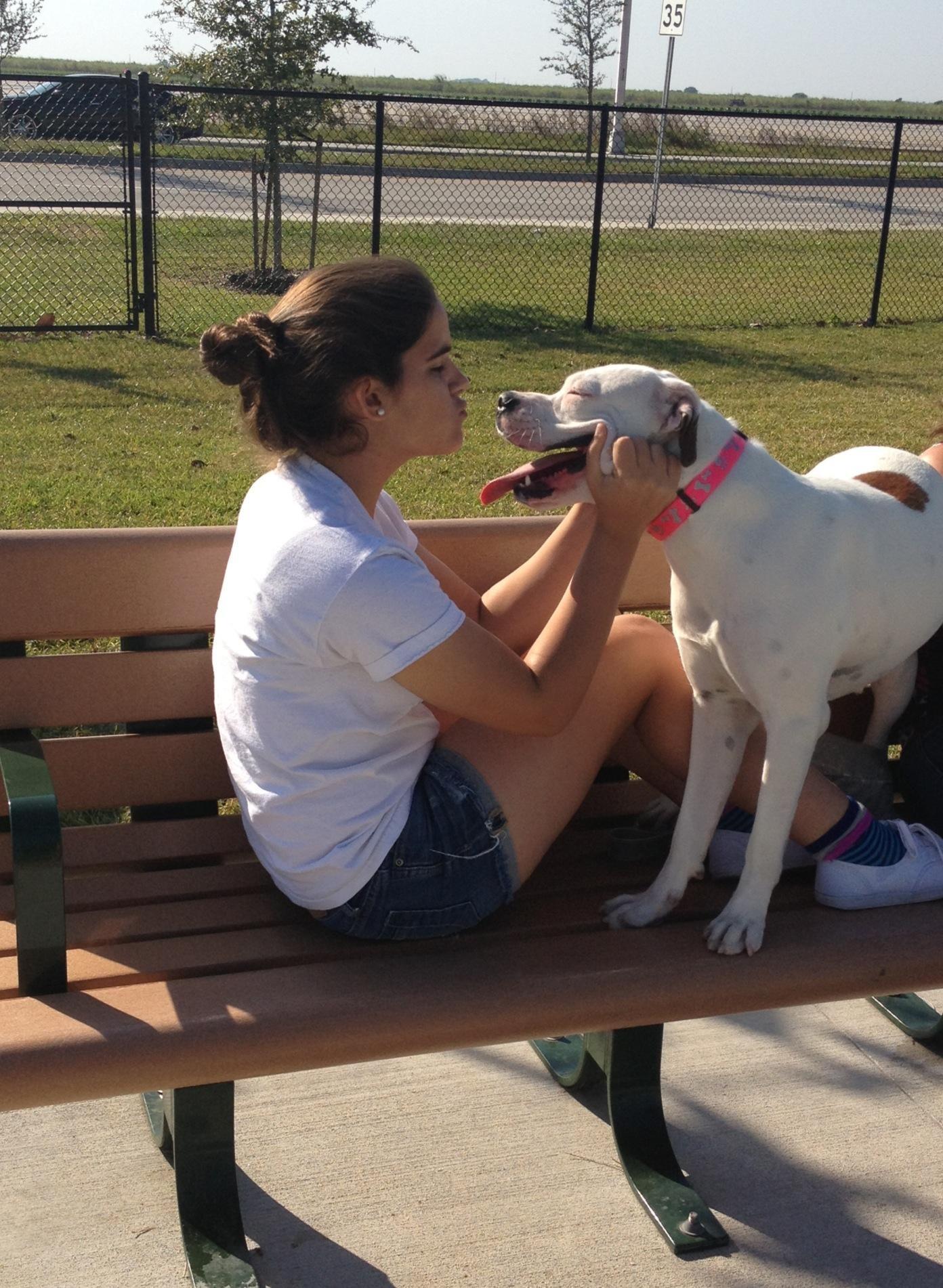 Yadira's dog day care