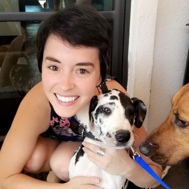 Sonya's dog day care