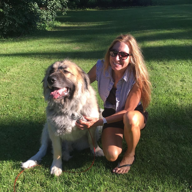 Barbara's dog day care