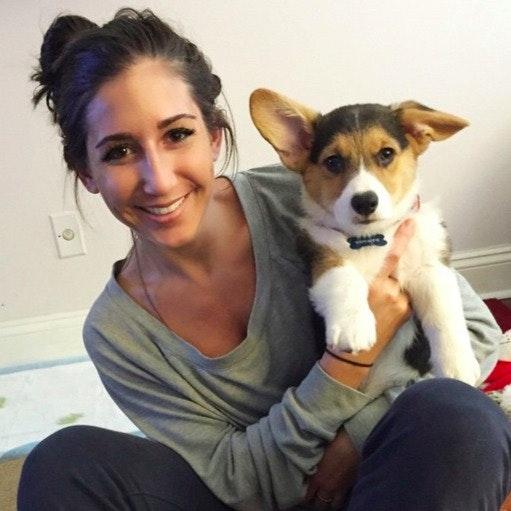 Danila's dog day care