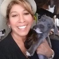 Yulisa's dog day care