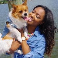 Brittnee's dog day care