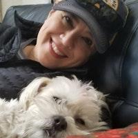 Sandi's dog day care