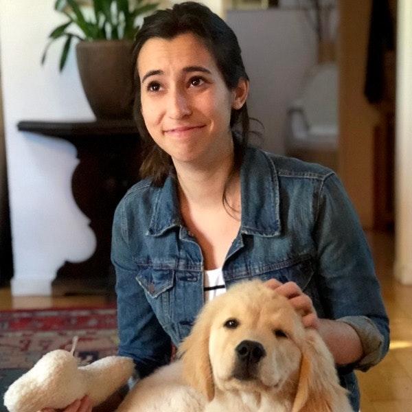 Carson's dog day care