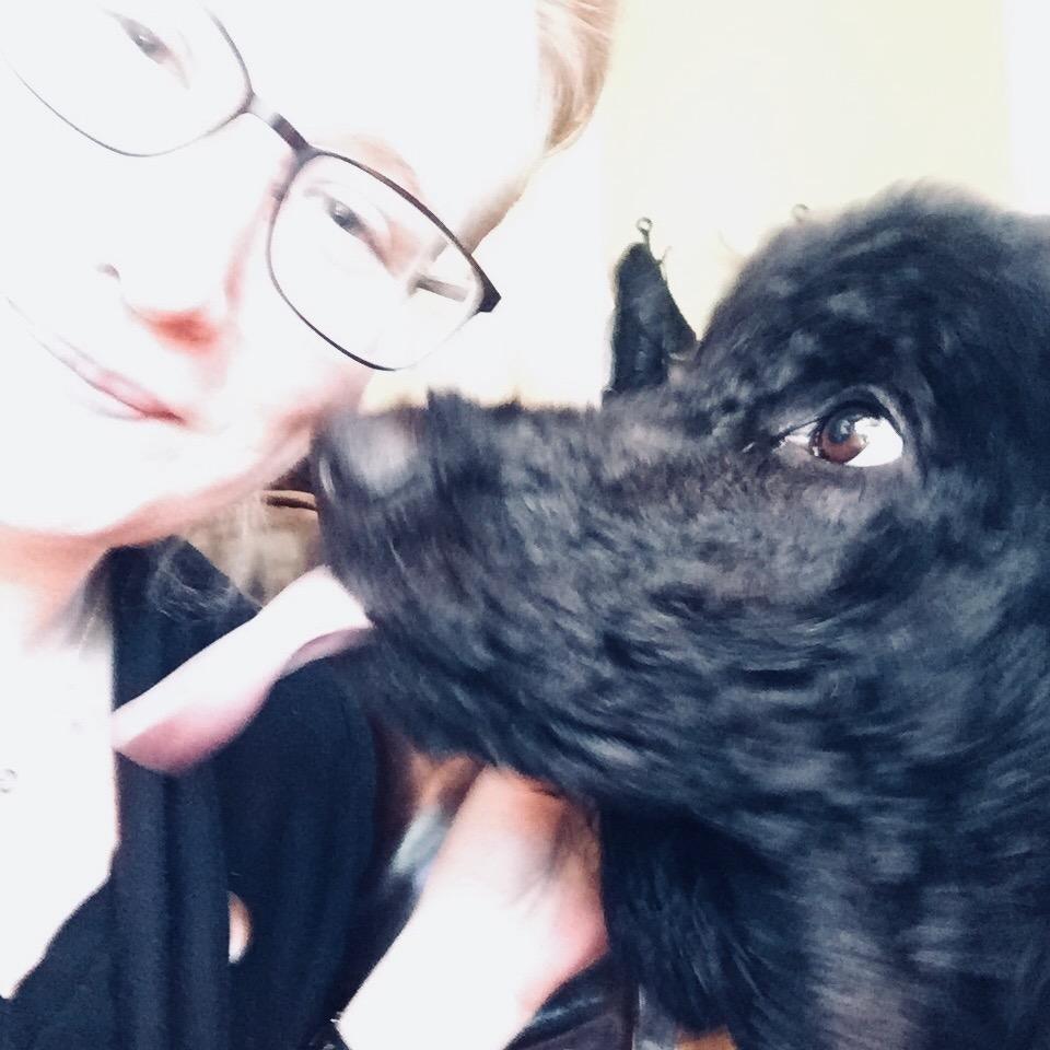 Karyn's dog day care