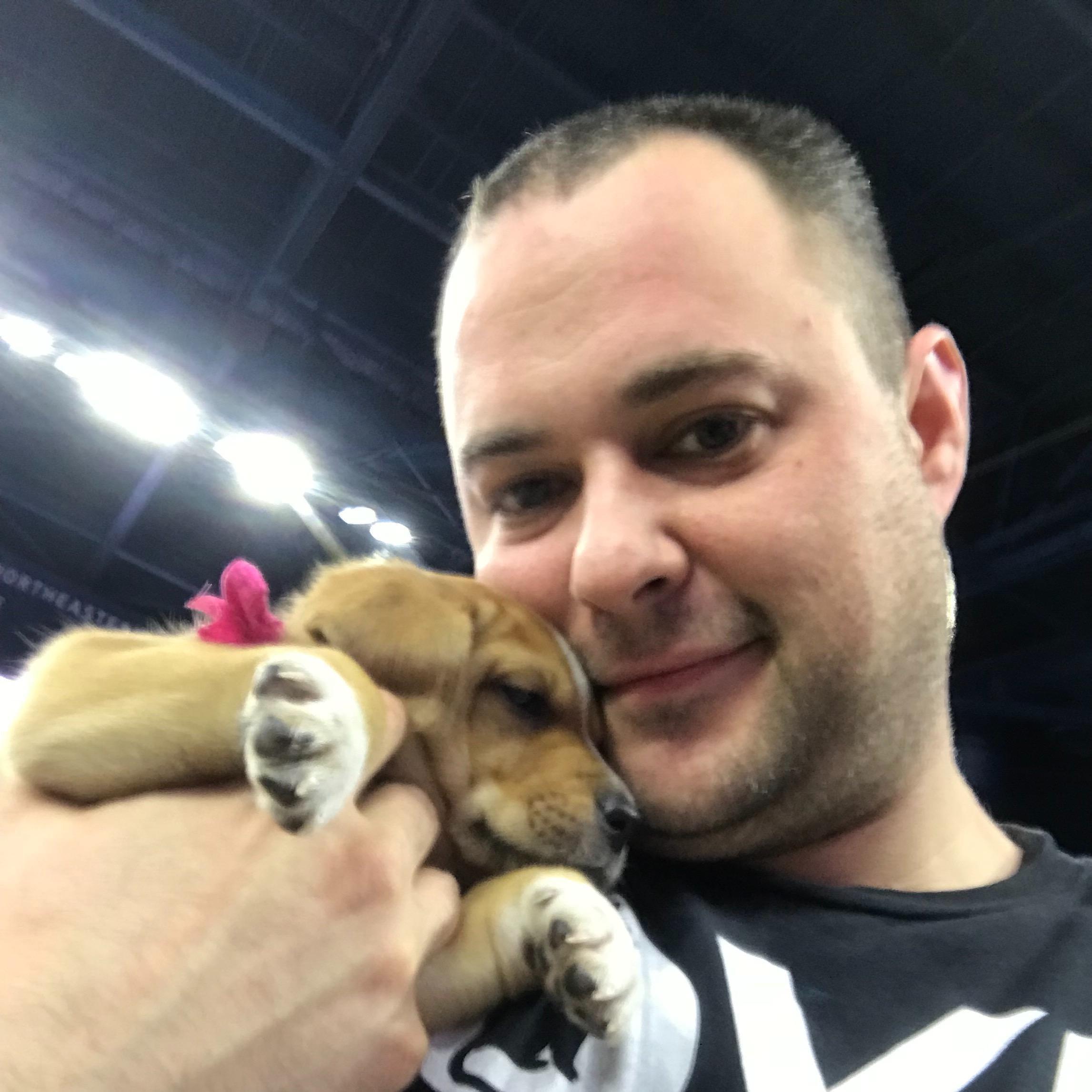 Shane's dog day care