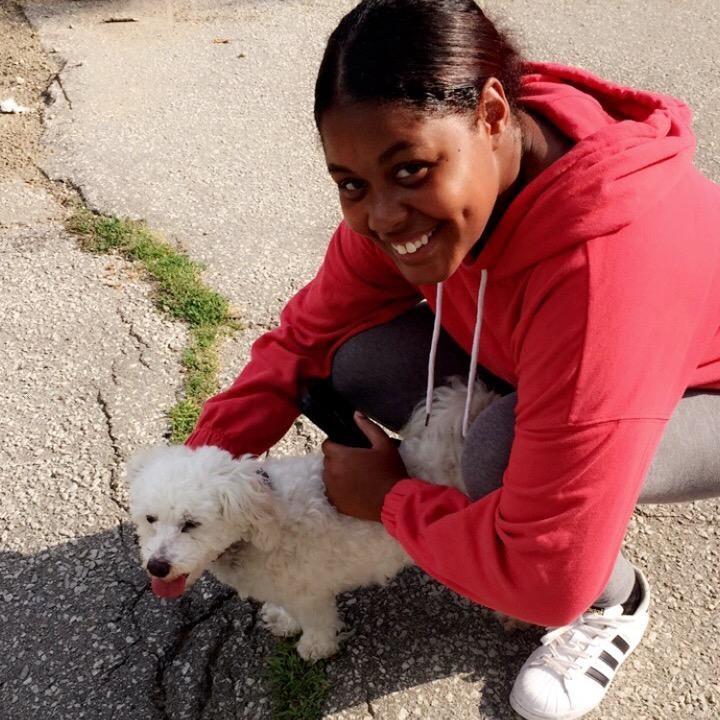 Latoya's dog boarding