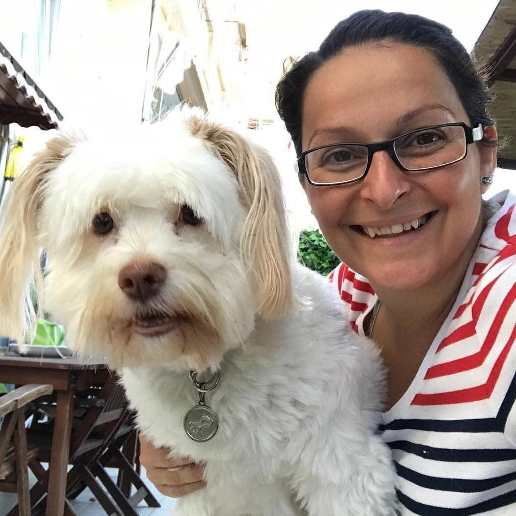 Dacya's dog boarding