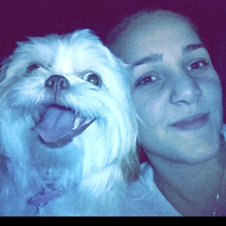 Gabriela's dog day care