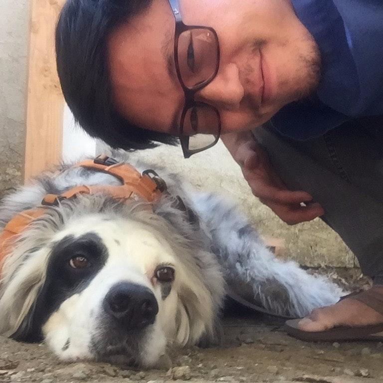 dog walker Clyde