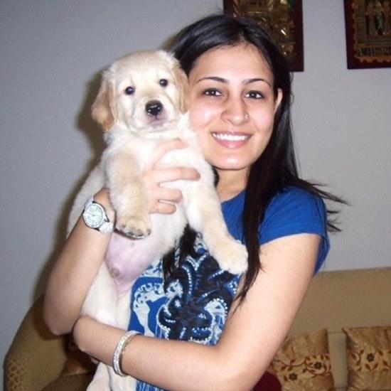 Megha's dog day care