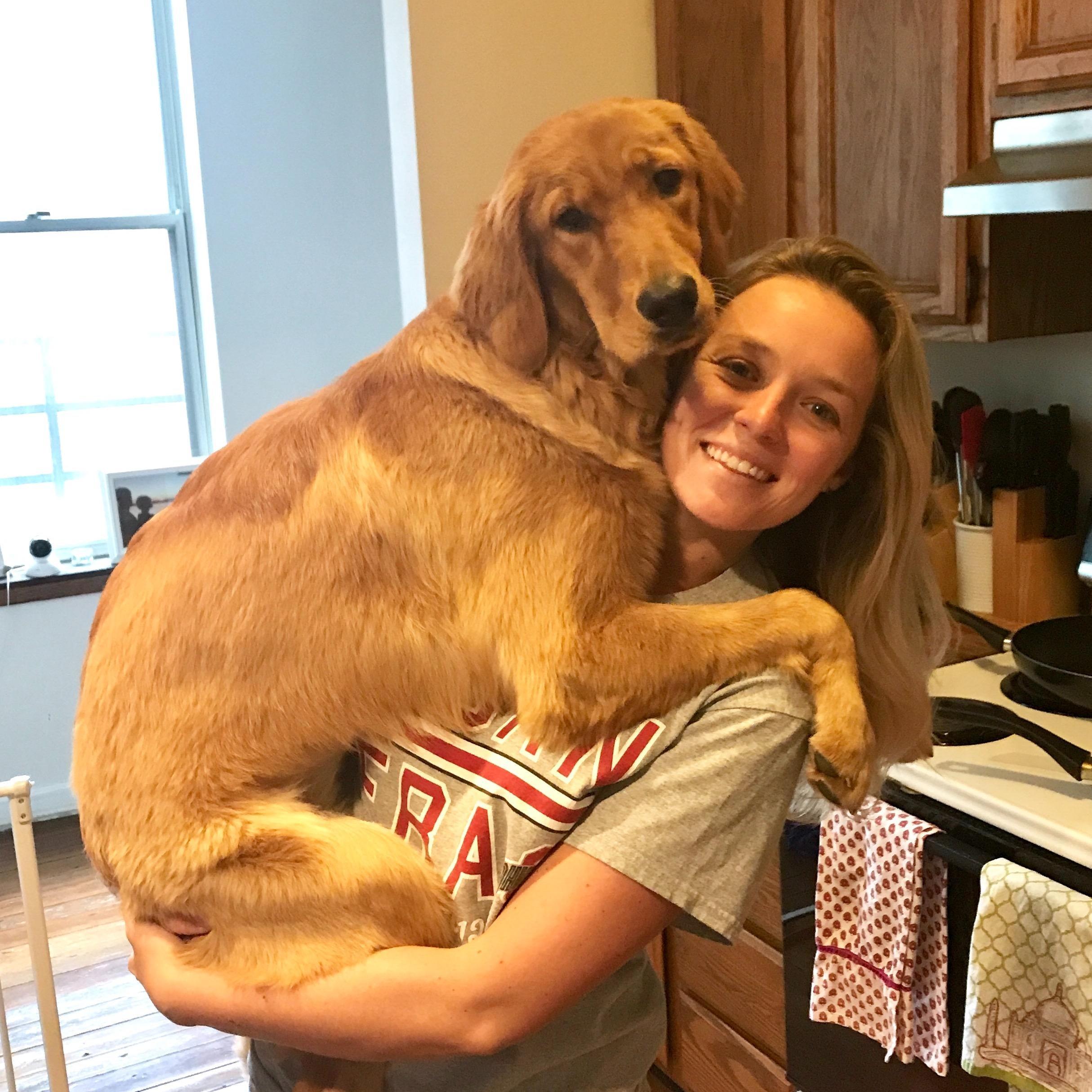 Lauren & Corey's dog boarding