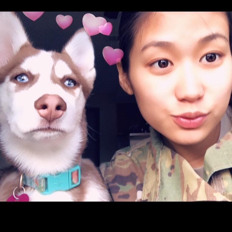 Mulan's dog day care