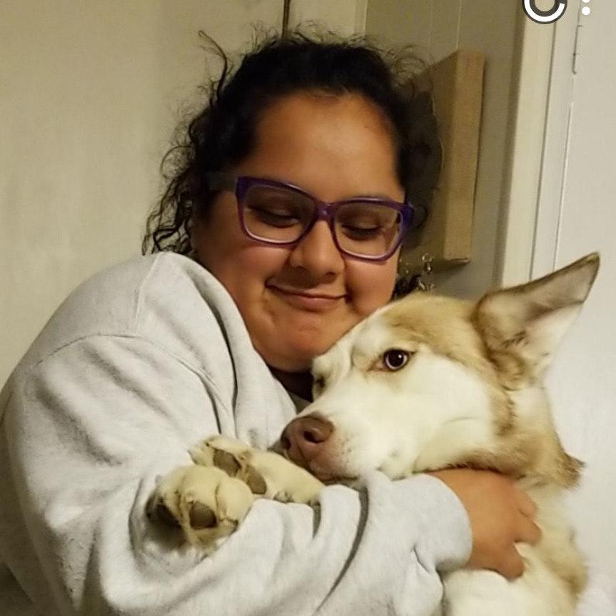Ivette's dog day care