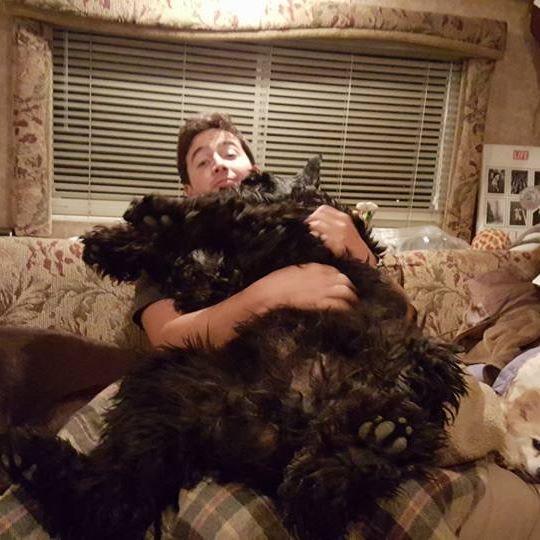 pet sitter Canen