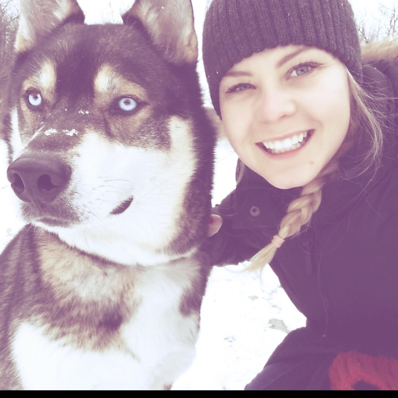 Elle's dog boarding