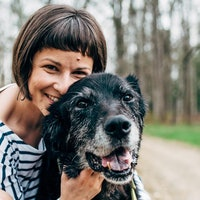 Shay & Seth's dog day care