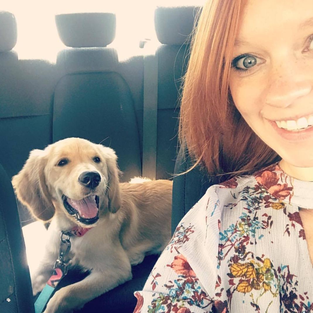 Catherine's dog day care