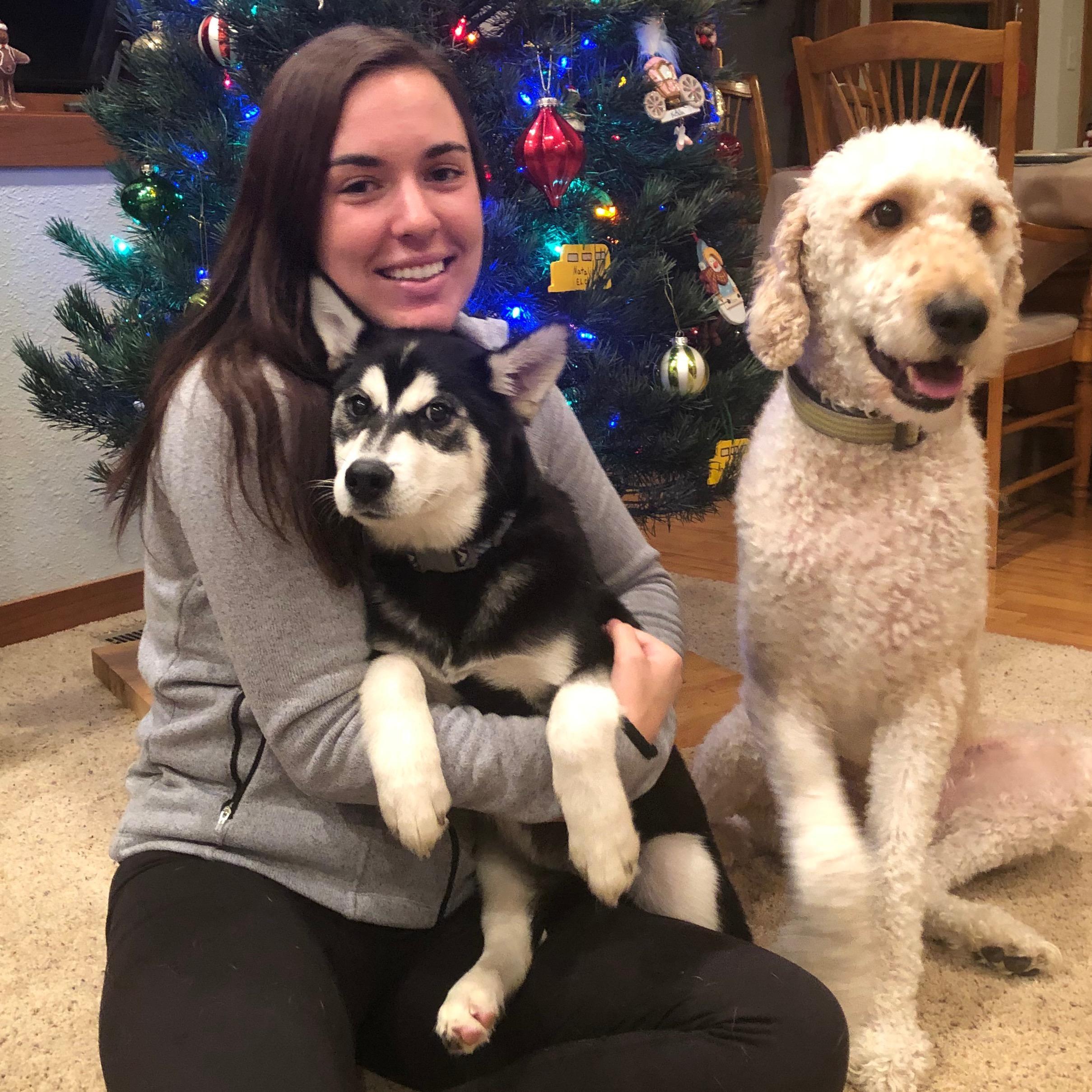 Alli's dog day care