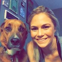 Best Dog Boarding In Dallas Tx