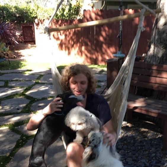 Owen's dog day care