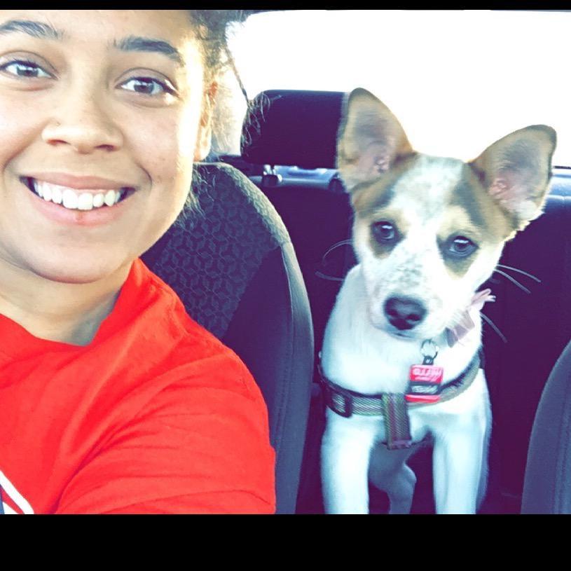 Kaisha's dog day care