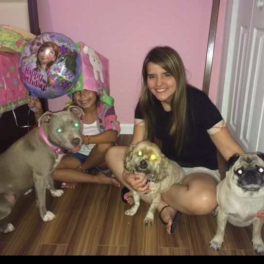 Andrea's dog day care