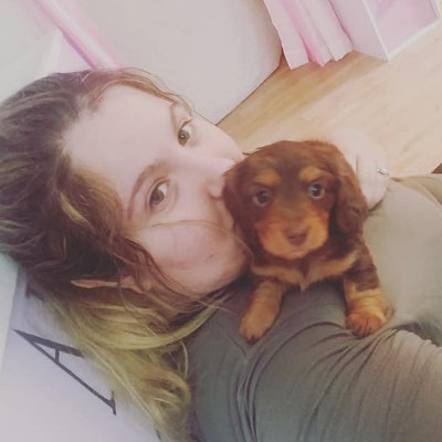Cassandra's dog day care