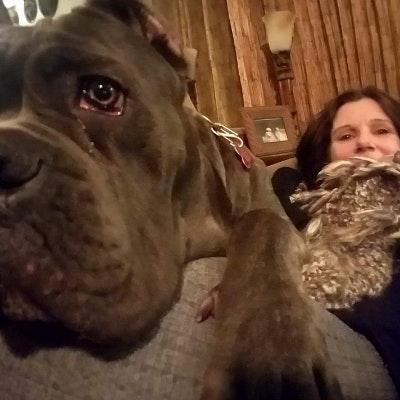 Kay & Miranda's dog day care